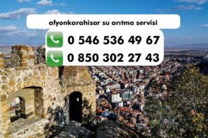 afyonkarahisar-su-aritma-servisi